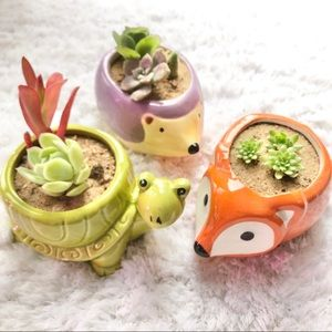 Other - Set of 3 Adorable Animal Pots